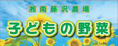 子どもの野菜 湘南藤沢農場